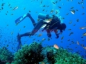 Scuba gear diving Дайвинг